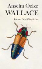 Anselm Oelze, Wallace